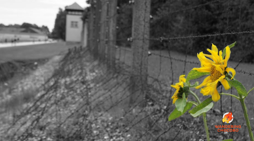 Munich to Dachau tours train and day trip