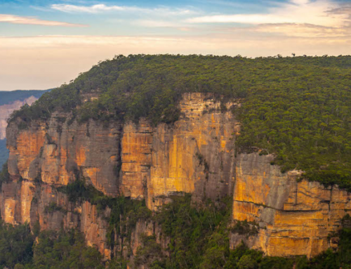 Unique Things to do in Blue Mountains, Australia: Itinerary with Local Tips