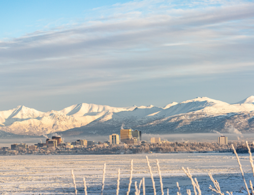 70+ Unique Things to do in Anchorage Recommended by a Local