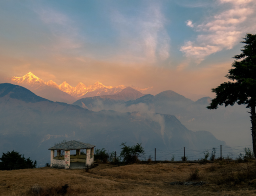 How Ecotourism Helped Stop Domestic Violence in this Indian Village