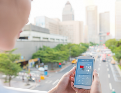 10+ Best Eco-Friendly Apps For Sustainable Travel and Lifestyle